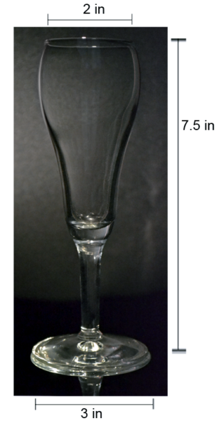Fluted Champagne Glass