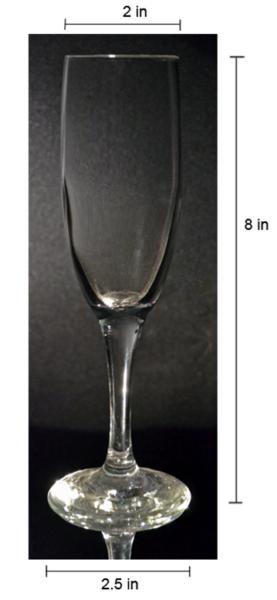 Round Champagne Glass