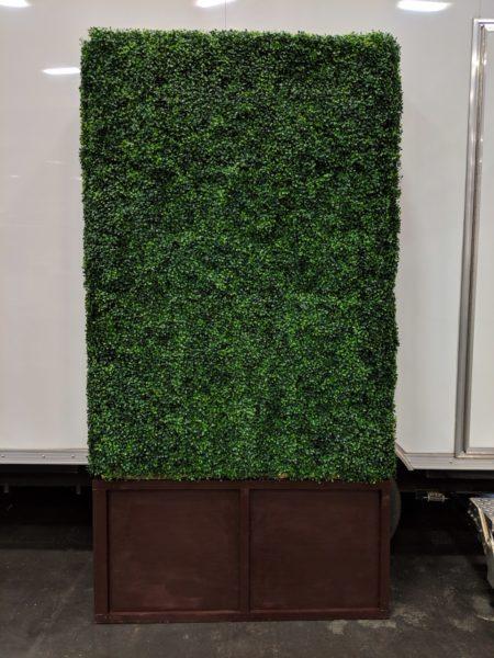 Boxwood Wall 4×8